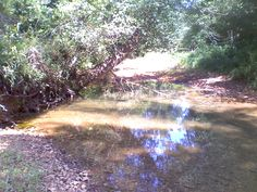 Nice Creek on a Harrison County, IN Lease Country Roads, Nice, Pictures, Photos, Nice France, Grimm