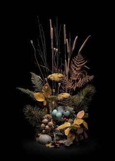 Enchanted forests: British woods and moors at night – in pictures | Art and design | The Guardian Forest Flowers, Still Life Images, Fear Of The Unknown, Seasonal Celebration, Wild Forest, Danse Macabre, Different Seasons, Floral Photography, Chiaroscuro