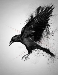 Nice Crow Tattoo Design by Death by Affection : Crow Tattoos Music Tattoos, Body Art Tattoos, Sleeve Tattoos, Crow Tattoos, Phoenix Tattoos, Ear Tattoos, Tatoos, Crow Art, Raven Art