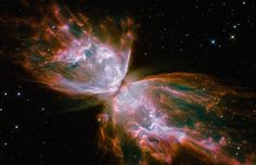 Majestuosa Mariposa Espacial. - AwsomThings