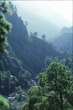 Caldera de Taburiente, La Palma Beautiful Islands, Beautiful Places, La Palma Canary Islands, British Overseas Territories, Places In Spain, Wild Nature, Vacation, World, Grand Canaria