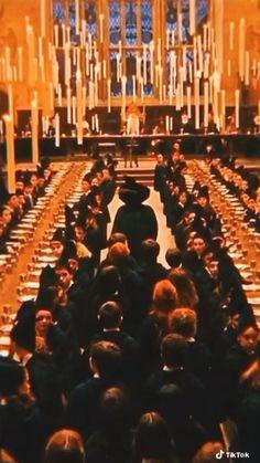 Harry Potter Gif, Harry Potter Triste, Wallpaper Harry Potter, Harry Potter Icons, Harry Potter Poster, Harry Potter Pictures, Harry Potter Comics, Harry Potter Aesthetic, Harry Potter Characters