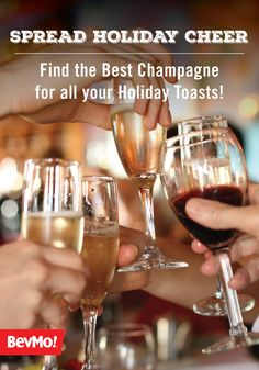 There are so many reasons to love bubbly—champagne, sparkling wine, and prosecco to name a few! Check out this guide to finding the best champagne for all your holiday toasts to learn everything you need to know about this effervescent beverage—perfect for spreading your Christmas cheer.