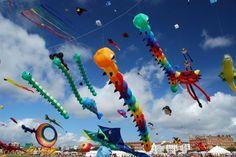 29 Festivals in 2014 for Your Diary ... kite festival,India
