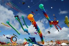 29 Festivals in 2014 for Your Diary ... kite festival,India