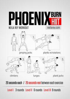 Phoenix Burn Workout