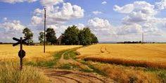 Резултат слика за vojvodina