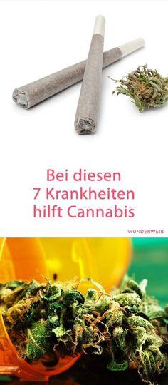 Netter Artikel, auch wenn die Suchterscheinungen übertrieben dargestellt werden. Gerade wenn es geraucht wird ist in der Regel Tabak und damit Nikotin anwesend. Das ist suchterzeugend, da kann das Cannabis nichts für.