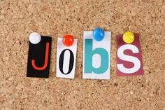 Jobsdhamaka : Find latest jobs and vacancies in Yamunanagar with top employers and recruitment agencies. Find the suitable career in Yamunanagar, India