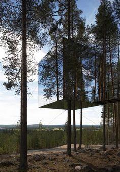 glazen huis in de bomen