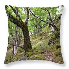 Scottish forest Throw Pillow for Sale by Ren Kuljovska Framed Prints, Canvas Prints, Art Prints, Forest Path, Pillow Sale, Travel Photographer, Handmade Decorations, Basic Colors, Poplin Fabric