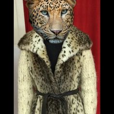 """Calling All Cheetah Girls!  Fun Faux Fur Cheetah Print Coat. Wrap Coat with dark brown belt. Body has the Cheetah Print/Sleeves have a wool Berber pattern. Has a lining inside and on sleeves.. Body is 29"""", Sleeves 19.5"""", Belt is 65"""" Absolutely Fabulous.. With Chocolate Leather Gloves.. or Ugg Gloves.. Jackets & Coats"""