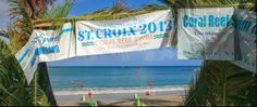 (Bucket list, someday-maybe?) St. Croix Coral Reef Swim Race | St. Croix Coral Reef Swim Race