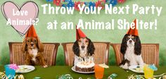 Love Animals? Throw Your Next Party at an Animal Shelter! It's cheap, you won't end up overdosing on gifts, you're giving homeless animals the rare opportunity to step outside of their cages and have fun, you're helping the shelter in so many different ways, your guests won't ever forget the experience, and maybe one of your guests will end up adopting a pet! -- All GREAT reasons!