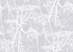 Cow Parsley (95/9049) - Cole & Son Wallpapers - A large scale all over design of cow-parsley, in white on a soft lilac background – giving a magical delicate effect.  Available in other colours. Please ask for a sample for a true colour match. Paste-the-wall product.