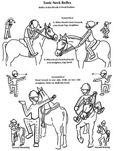 Hippotherapy & OT info to know  -  Tonic Neck Reflex