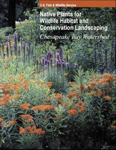 U.S. Fish & Wildlife Service  Native Plants for Wildlife Habitat and Conservation Landscaping  Chesapeake Bay Watershed