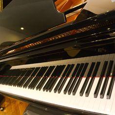 Bom dia! Pianos de cauda e verticais, encontra no Salão Musical de Lisboa! Venha experimentar os nossos pianos. www.salaomusical.com