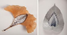 Stitched Leaves by Hillary Fayle  http://www.thisiscolossal.com/2014/06/stitched-leaves-by-hillary-fayle/