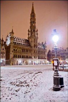 Bruxelles sous la neige, le 15 janvier 2013 - Brussel in de sneeuw, 15 januari 2013: Stadhuis - Brussels in snow, 15 January 2013