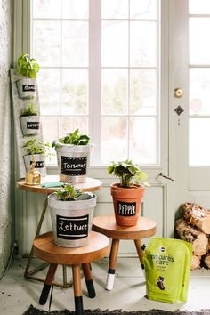 In partnership with influencer @katea - Be sure to place your plants in a place that will allow them to get the most sunlight, and take care of them with Nature's Care. #sponsored