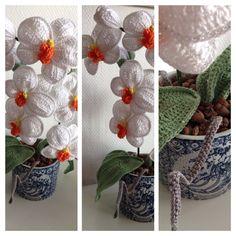 Hæklet orkide