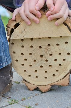 how to make a mason (carpenter) bee house. Mason bees are non-stinging and are famous pollinators.