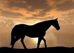 JORNAL O RESUMO - PARÁBOLAS - REFLEXÃO DO DIA: Parábola : O Porco e o Cavalo