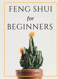 Feng Shui Guide, Feng Shui Basics, Feng Shui Rules, Feng Shui Items, Feng Shui Art, Feng Shui Energy, Feng Shui For Beginners, Feng Shui Bathroom, Feng Shui History