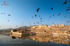Jaipur Amer Fort  II India by chookia