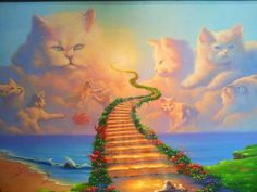 An Amber-Colored Life: Stairway to Kittens.