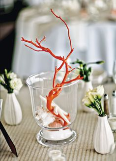 Nautical Centerpieces with Coral, Shells and Wood