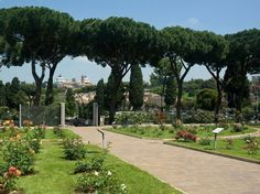 ROSETO COMUNALE DI ROMA Rome  Rome's municipal rose garden opens to the public every year in late spring, when more than 1,100 different varieties of roses from around the world bloom with Circus Maximus and the Palatine Hill as a backdrop.