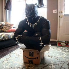 If I fits I sits... Black Panther... he is still a cat