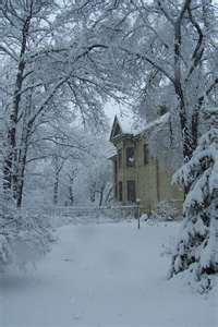 House tucked away in snow covered trees I Love Snow, Winter Love, Winter Snow, Winter White, Winter Christmas, Winter Images, Winter Pictures, Snow Scenes, Winter Scenes