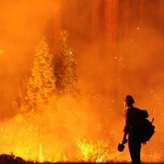 7th Largest California Fire: Bigger Than Chicago : DNews