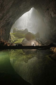 "evesapples: "" the-lonely-moon:This recently discovered cave in Vietnam is massive -there is an entire forest inside """