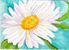 ACEO White Shasta Daisy Watercolor on Aqua  by SharonFosterArt, $6.00