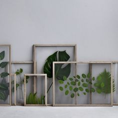 DIY Framed leaves glass on glass Framed Leaves, Deco Nature, Creation Deco, Leaf Flowers, Home And Deco, Home Accessories, Diy Home Decor, Diy And Crafts, Sweet Home