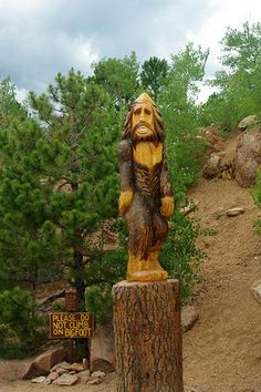 Bigfoot, Pikes Peak, Pike National Forest, Colorado Springs, Colorado