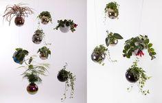 Závesné kvetináče Plants, Design, Plant, Planets