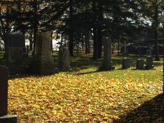 Tea & Walk: Pioneer Cemetery Tour, Oshawa Museum