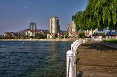 Kelowna, British Columbia -- Curated by: Neufeld Jones   103-1553 Harvey Ave, Kelowna, BC V1Y 6G1   250-717-5027