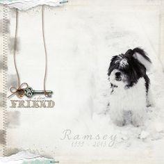 touching pet memorial digital layout by tonya regular
