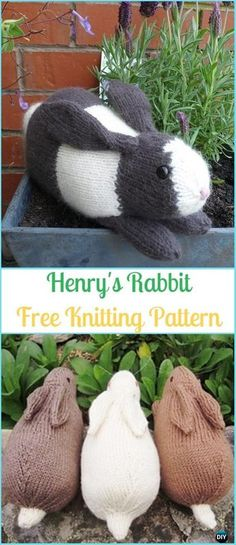 Amigurumi Henry's Rabbit Free Knitting Pattern - Amigurumi Knit Bunny Toy Softies Free Patterns