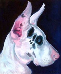 Great Dane Harlequin Puppy Dog giclee Fine Art Print on Etsy, $19.94