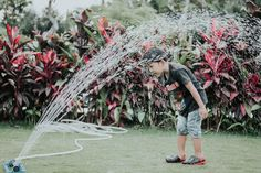 Effective & Useful Tips for Sprinkler Winterization Water Sprinkler System, Best Sprinkler, Real Plants, Water Plants, Boxed Water Is Better, Games To Play With Kids, Garden Sprinklers, Lawn And Landscape, Bowling