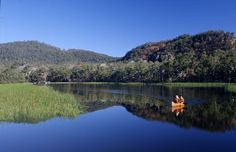 Dunns Swamp, a piece of magic in the Wollemi National Park and only 20 min from my family home.