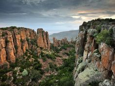 From epic coastlines and colorful architecture to penguin-filled beaches and vibrant coral reefs, the entire country deserves to be explored, but here are our picks for the 20 most beautiful places in South Africa. Vacation Places, Vacation Spots, Tsitsikamma National Park, Safari, Wetland Park, Most Beautiful, Beautiful Places, Roadtrip, Africa Travel