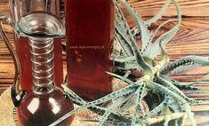 sk // Liečivé víno z aloe Healing Herbs, Korn, Plant Hanger, Aloe Vera, Medicinal Plants, Herbal Medicine
